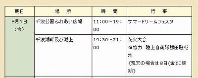 水戸黄門祭り花火2008.jpg
